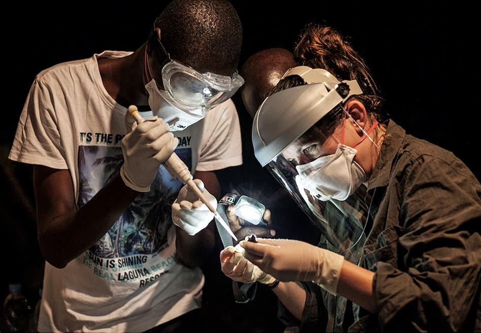 18d9482fddc6 Ebola  Da forskernes mareridt blev til virkelighed