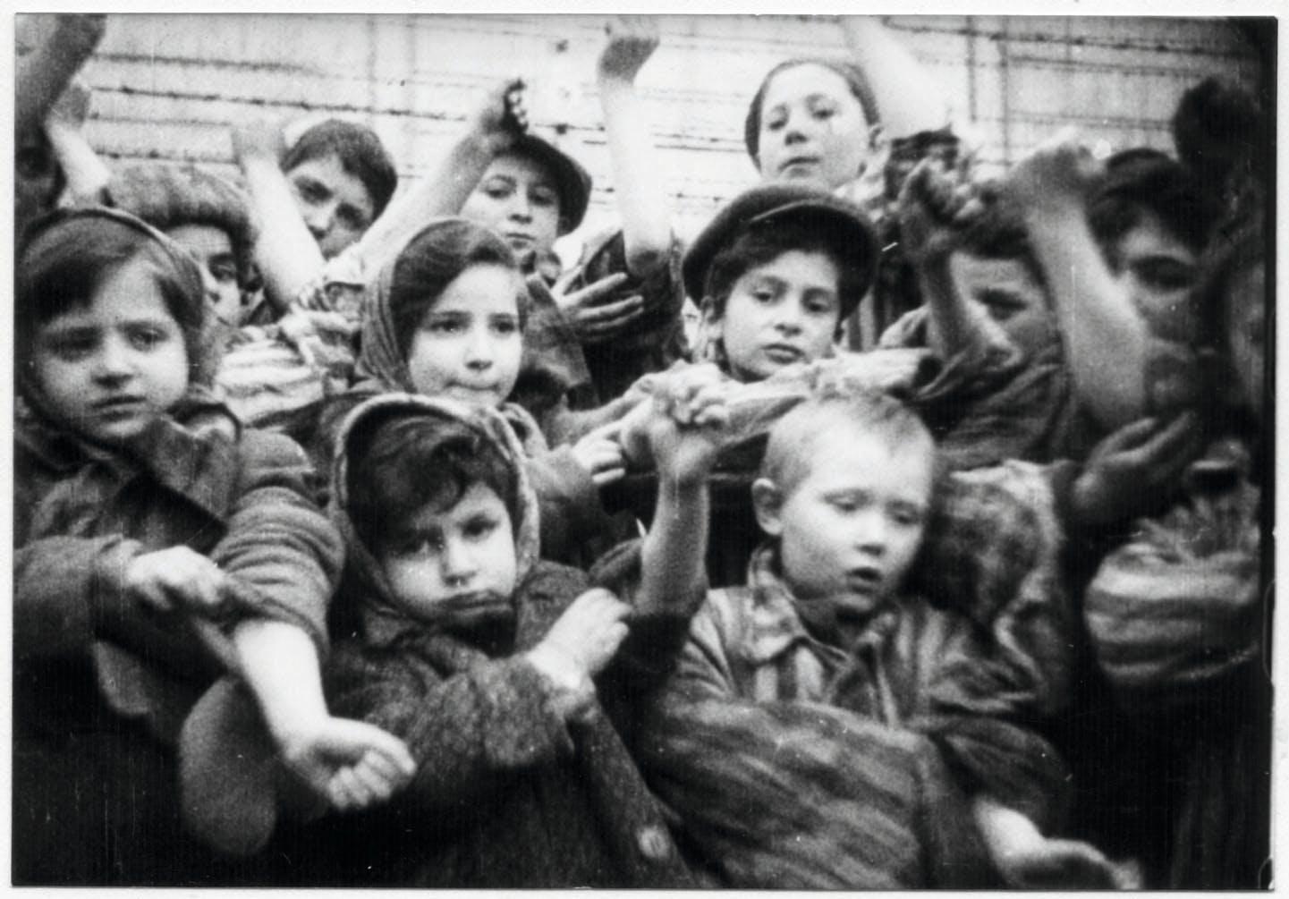 Barn som överlevde Auschwitz