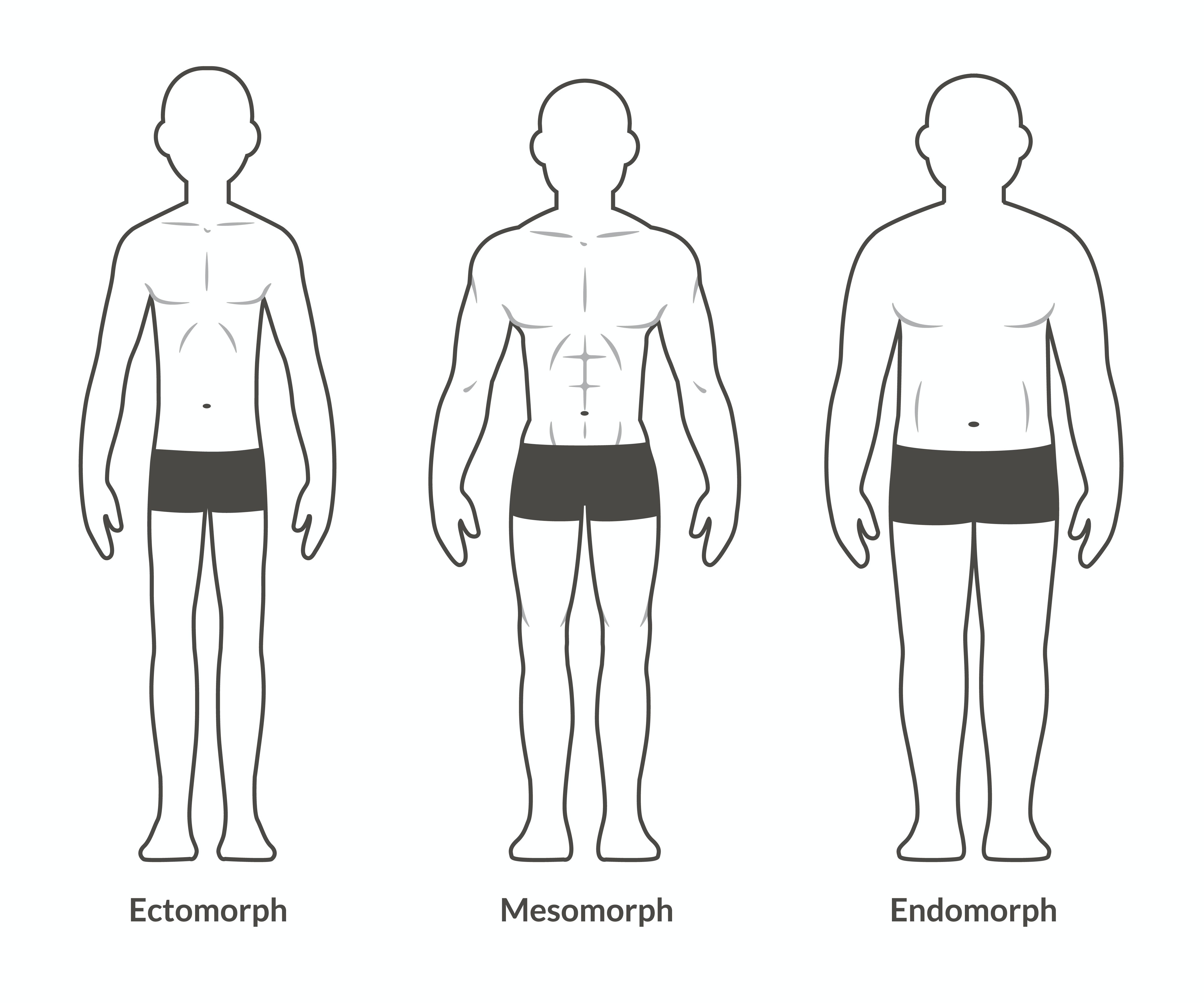 kropstyper mænd