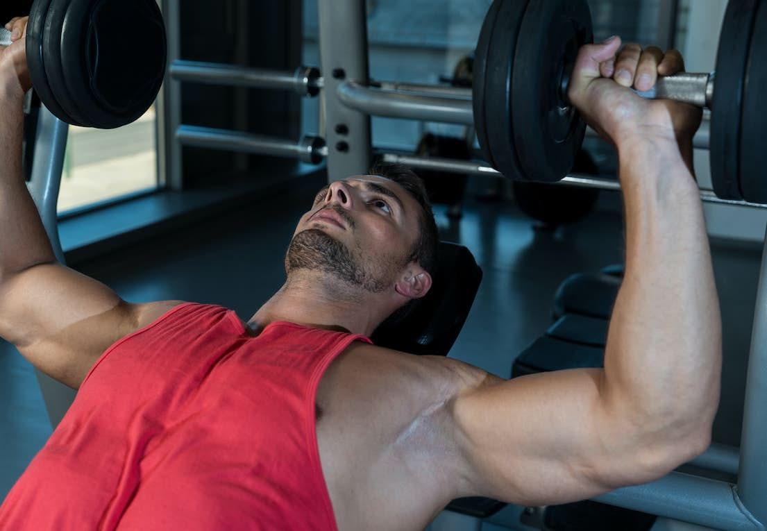 Attraktiva Lyft vikter och gå ned i vikt | Aktiv Träning VT-81