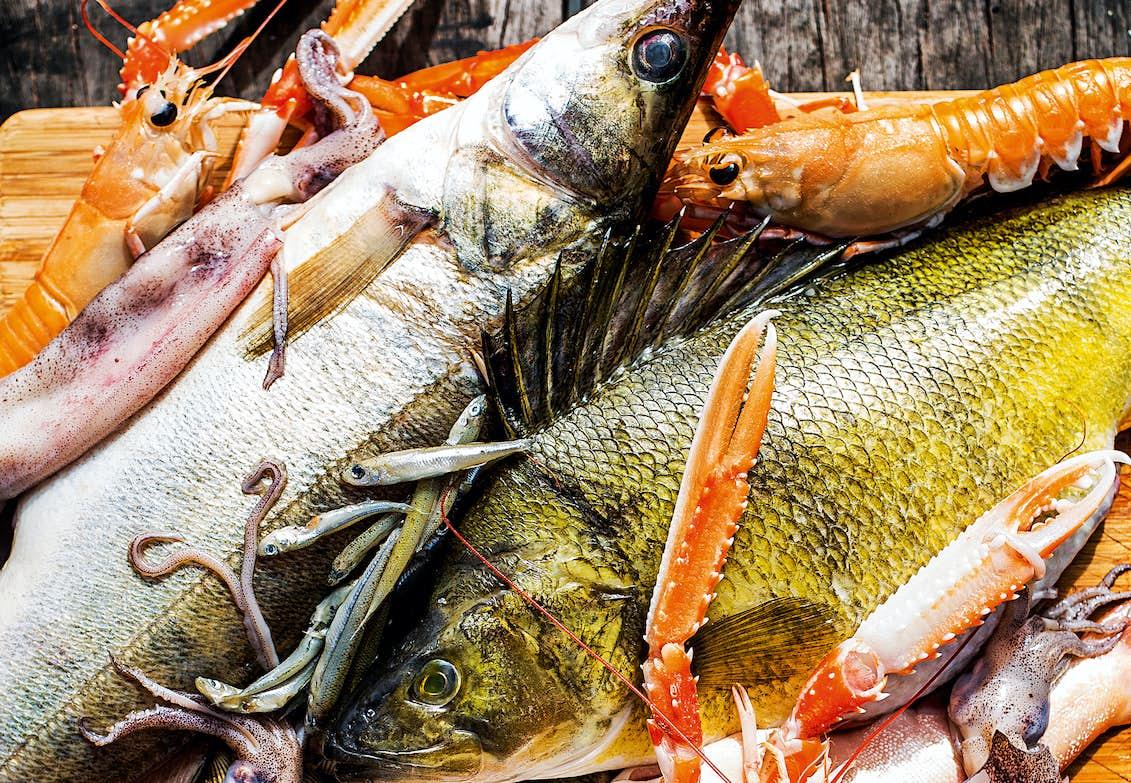 varför är fisk bra