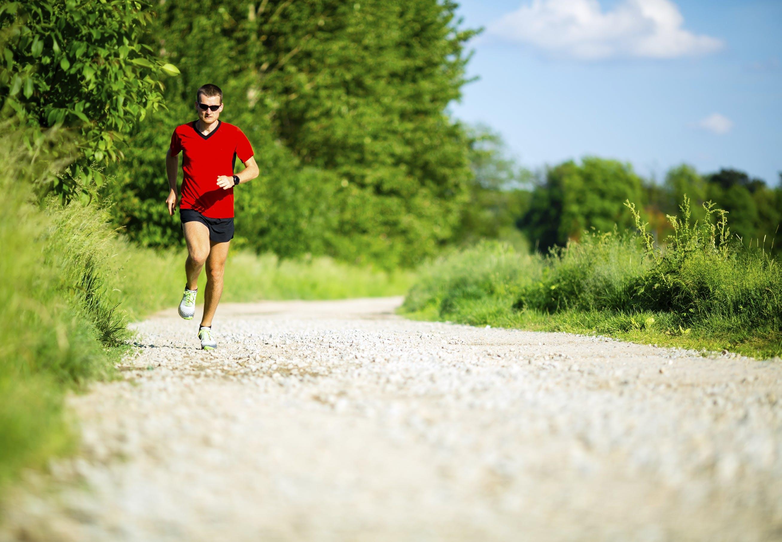 Kost og træning på den effektive måde | Aktiv Træning