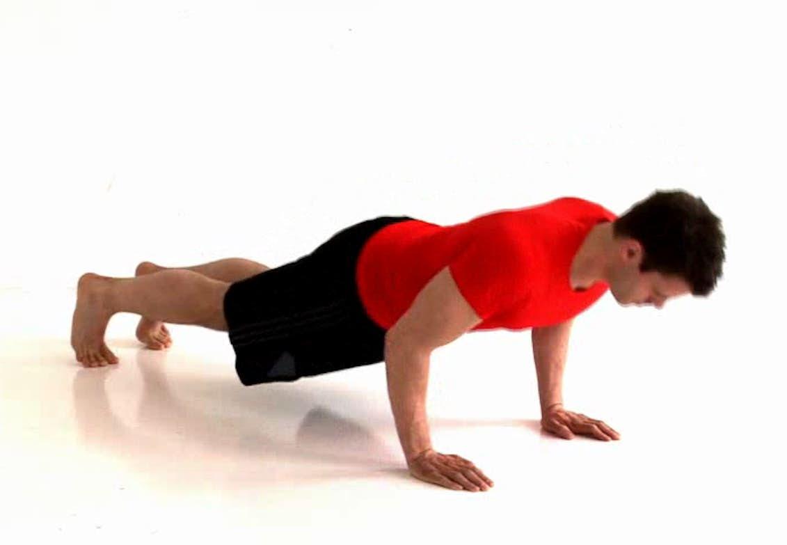 vilken är kroppens största muskel