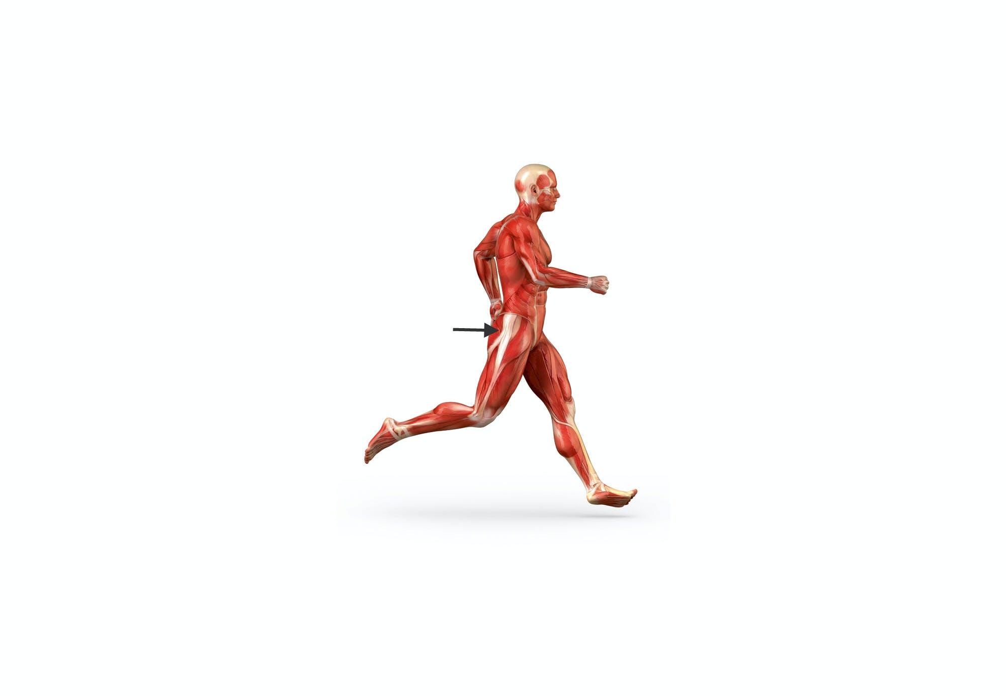 Hjælp, jeg har løberknæ! | Aktiv Træning