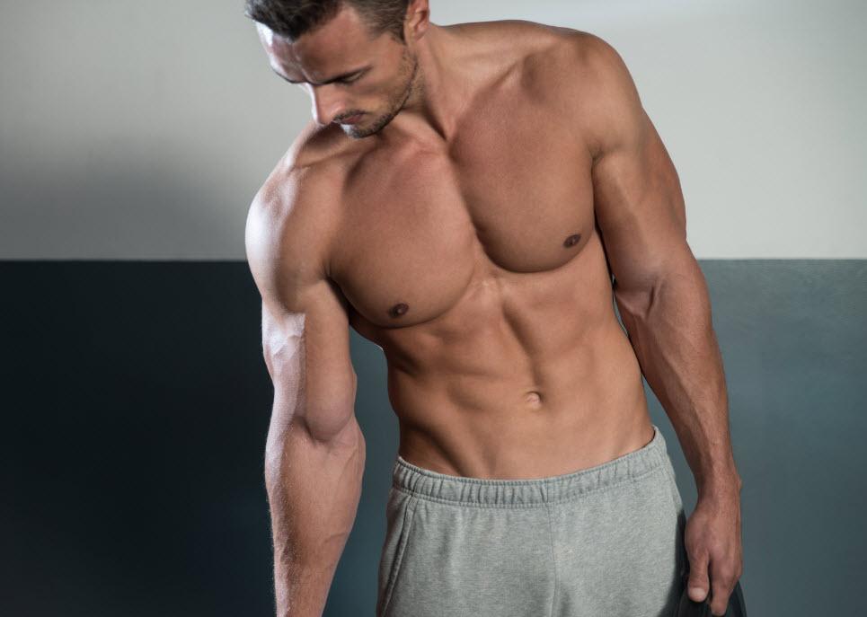 lange muskler