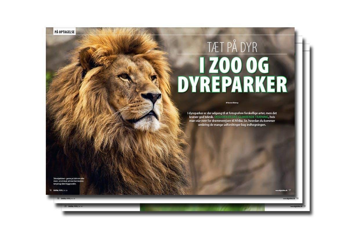 dyreparker i Sjælland anal sex dansk