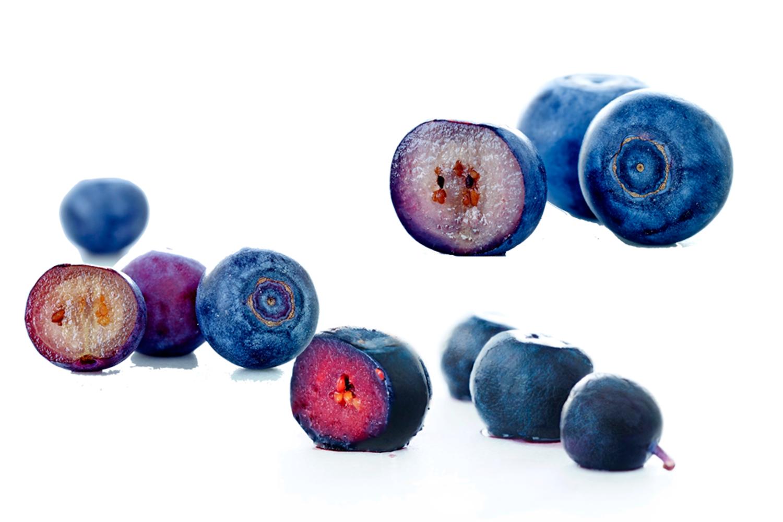 blåbär olika sorter
