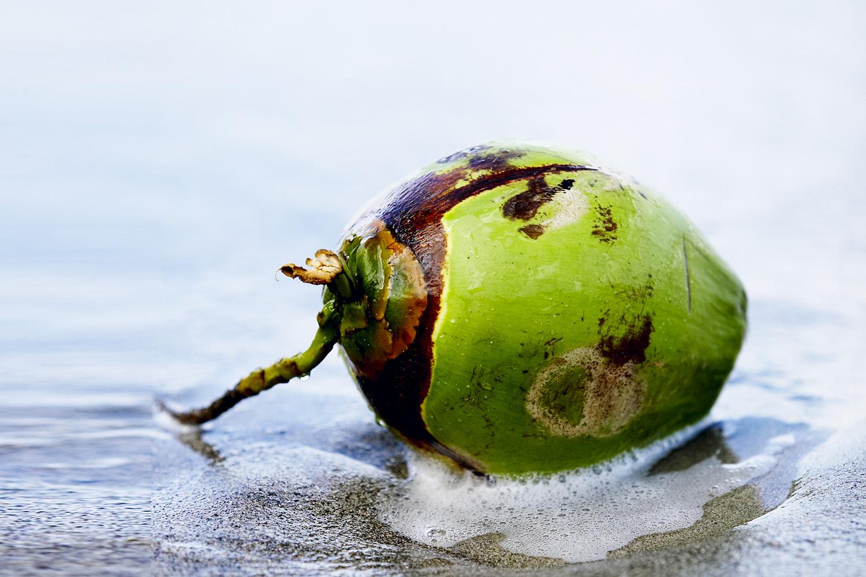 hvad er kokos godt for