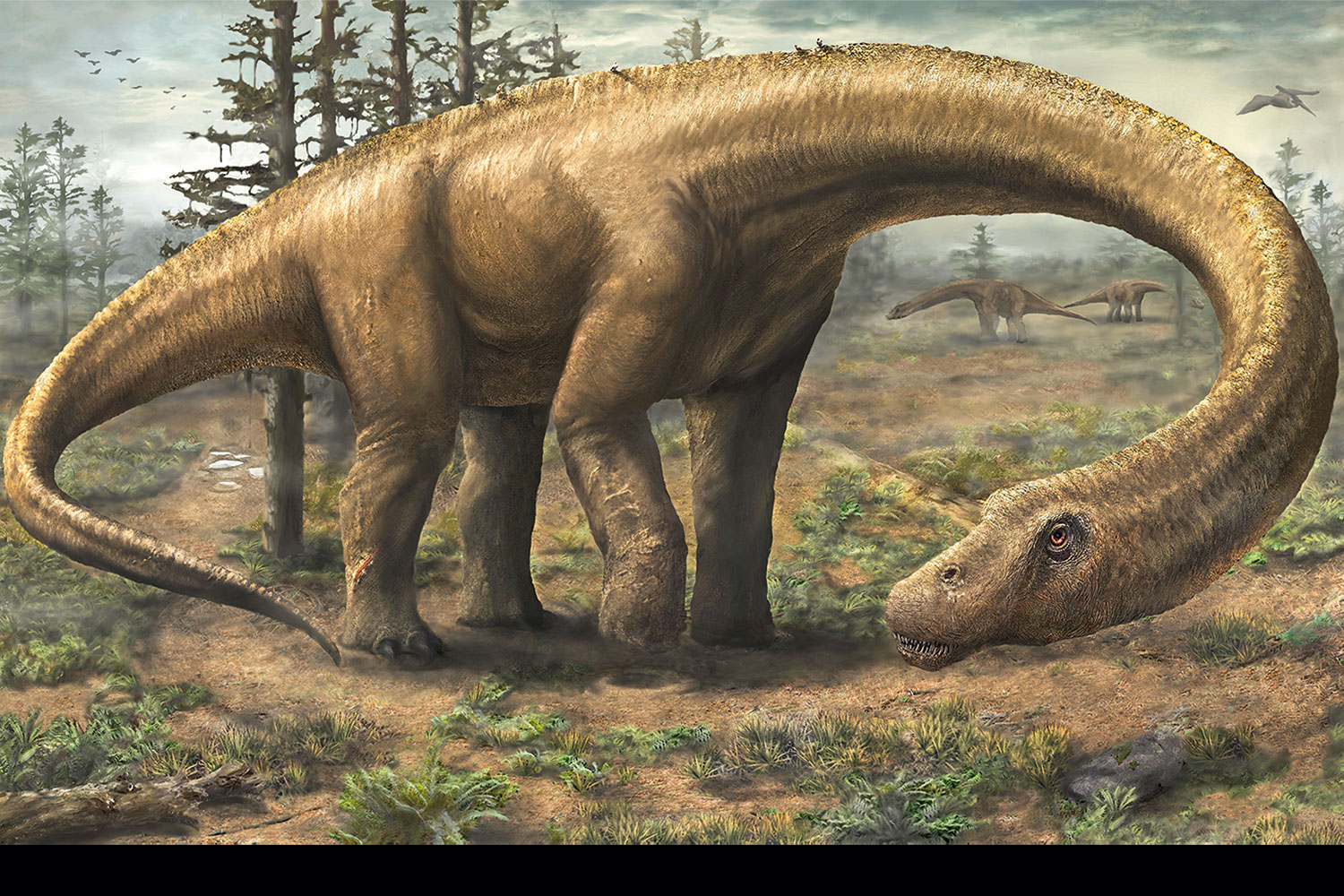 are drones robots with Dinosaurus De Enorme Dreadnoughtus Leefde Naast T Rex on Artificial Intelligence Ppt 65418031 besides Patrol officers in vehicle in addition Lol Surprise Muneca together with Witte Haai Jaagt Met Zon In De Rug as well Modern Technology Gadgets.