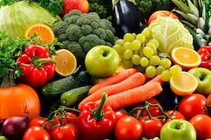 Forskel frugt groentsager