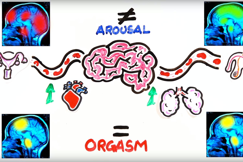 miten nainen saa orgasmin nainen ja seksi