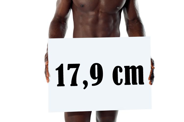 forskellige størrelser af pennis