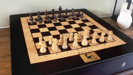 Spela Schack Mot Sig Själv
