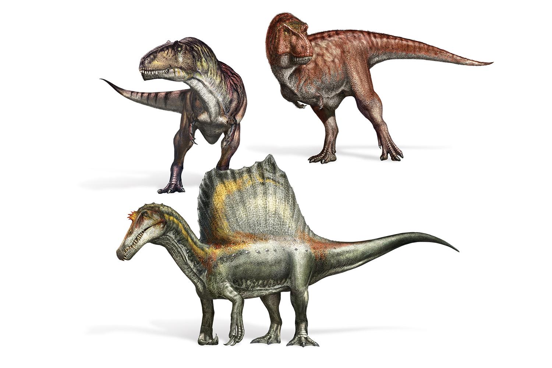 dyr dinosaurus spinosaurus verdens stoerste rovdyr