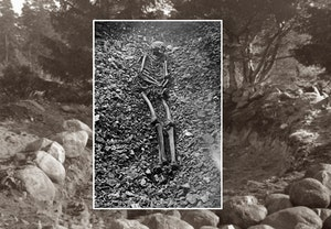 Forntida gravar oland skelett smittkoppor rakejo5g8xgesx3oh6pguw