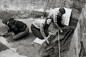 Fotografi kronprinsessa margrethe danmark arkeologi  f  qxkcuuhlwu prbfxtw