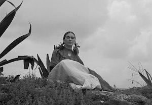 Frida kahlo vsthwjpwx3fl0uerkiynhg