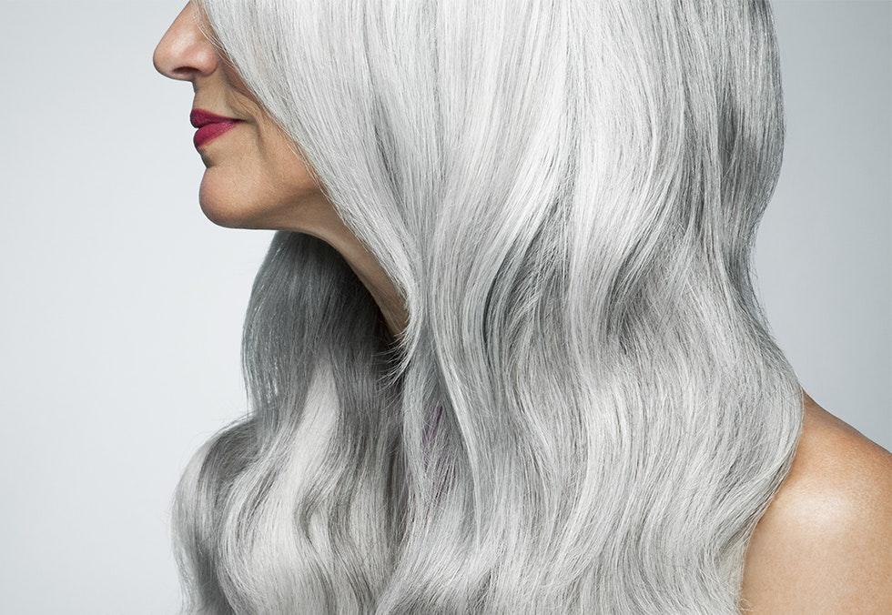 lilla grå hår