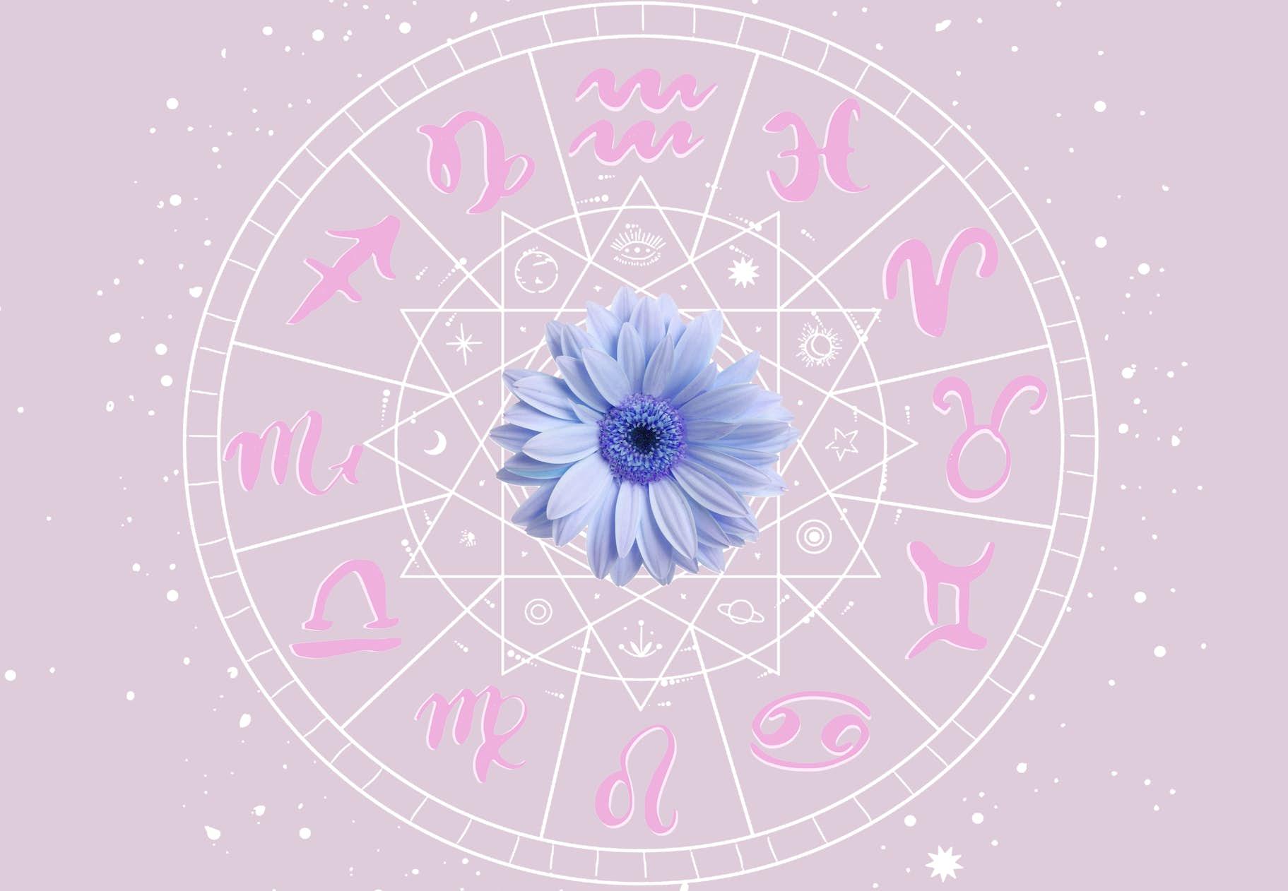 Sjernetegn stjernetegn