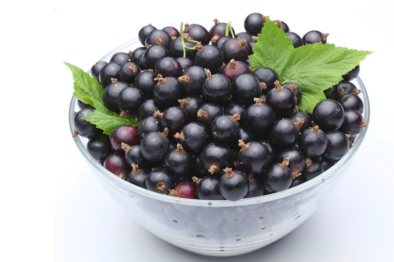 svarta vinbär nyttigt