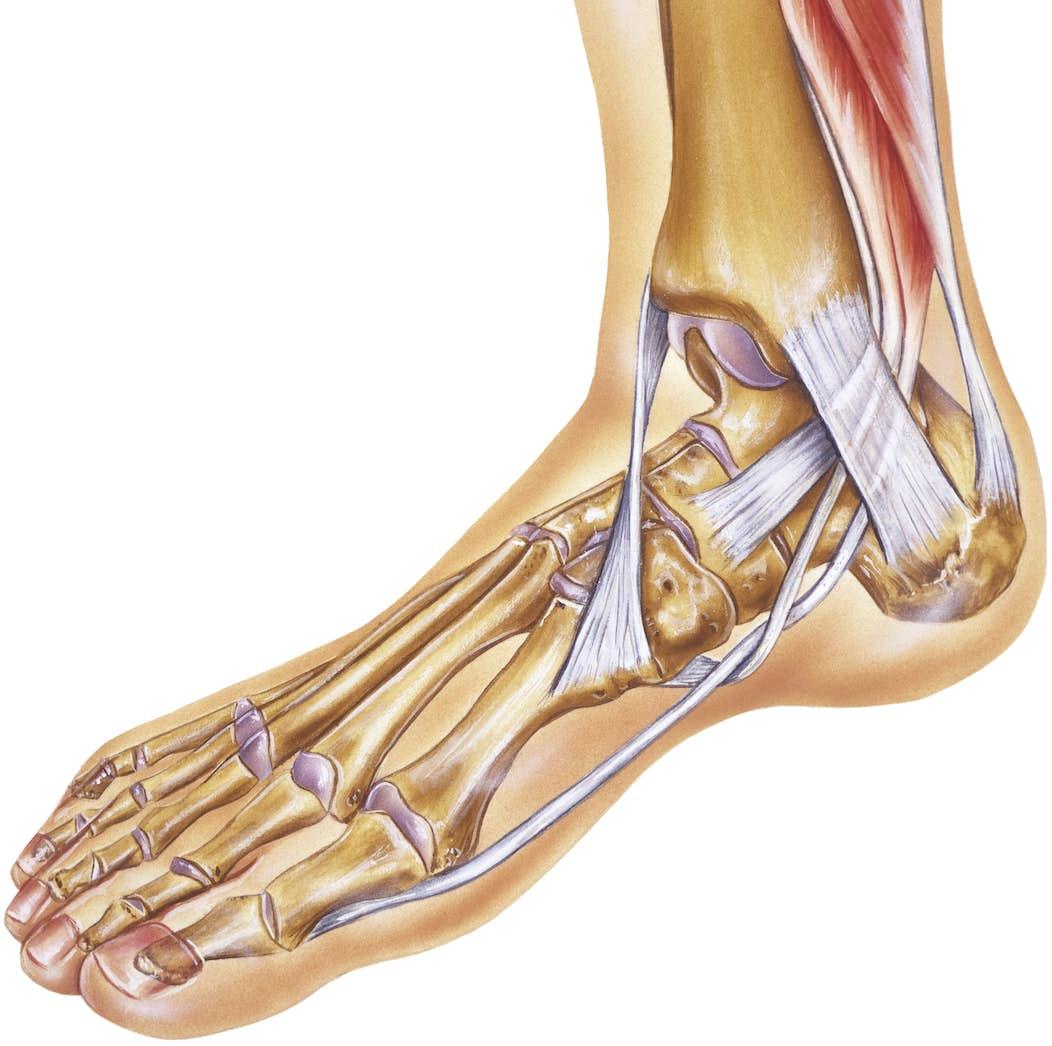 få bättre blodcirkulation i fötterna