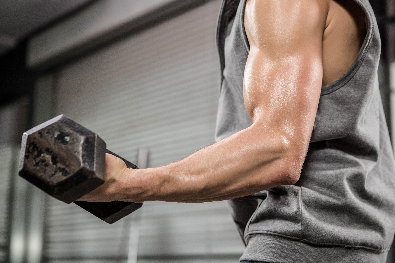 träningsprogram fria vikter