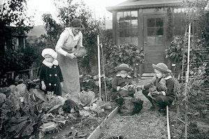 Kolonitradgard goteborg 1918 vzncbmzemh9sitgnfluzyw