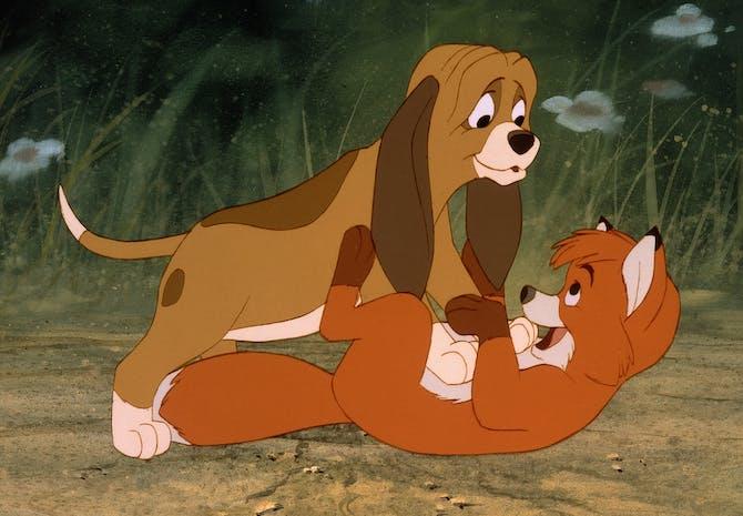 bambi dating historie