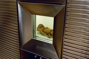 Otzi aldsta mumien forntiden arkeologi 6zu3trukomudbyoi1dr0oq