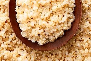 Quinoa web zc5zmtifmfvvu7faz1ngog