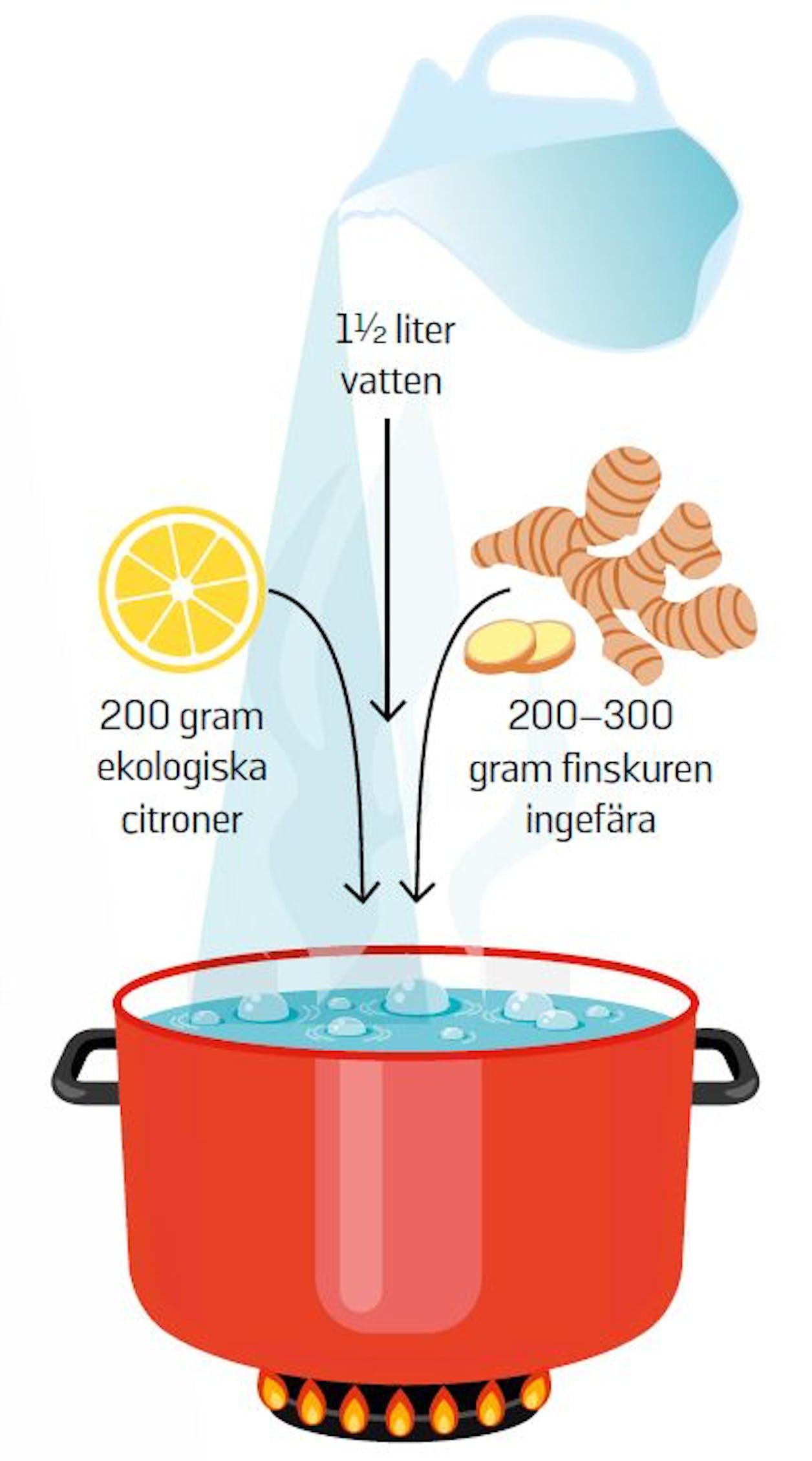 Recept på ingefärsshot