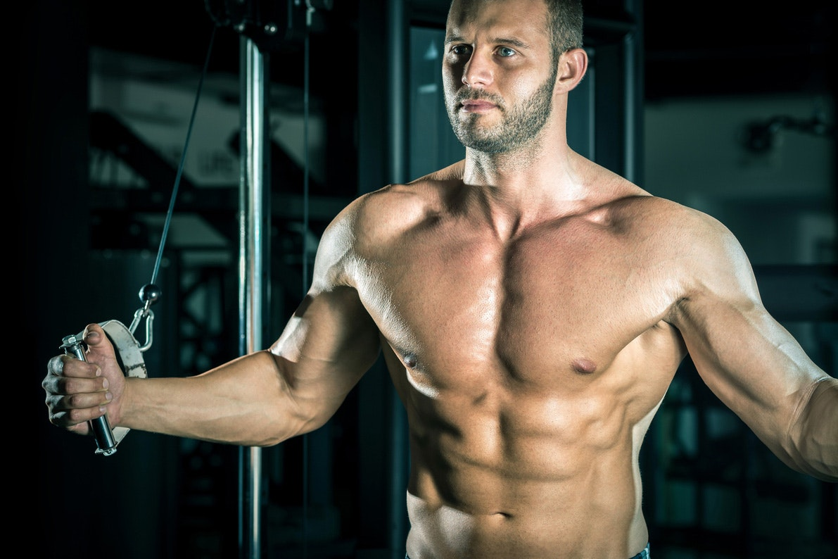 har mænd flere muskler end kvinder
