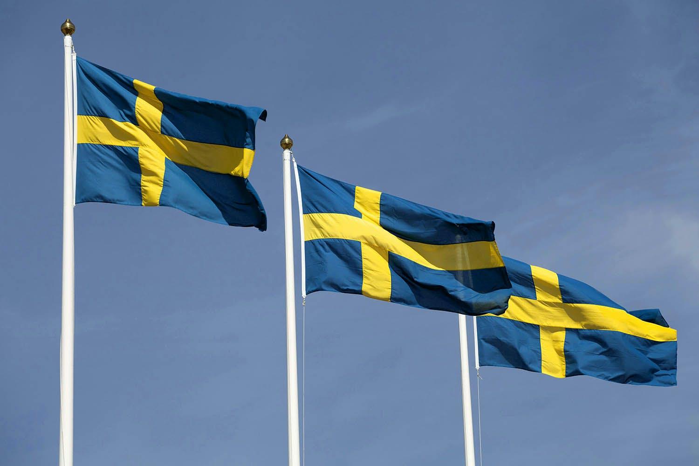 Bildresultat för svenska flaggan