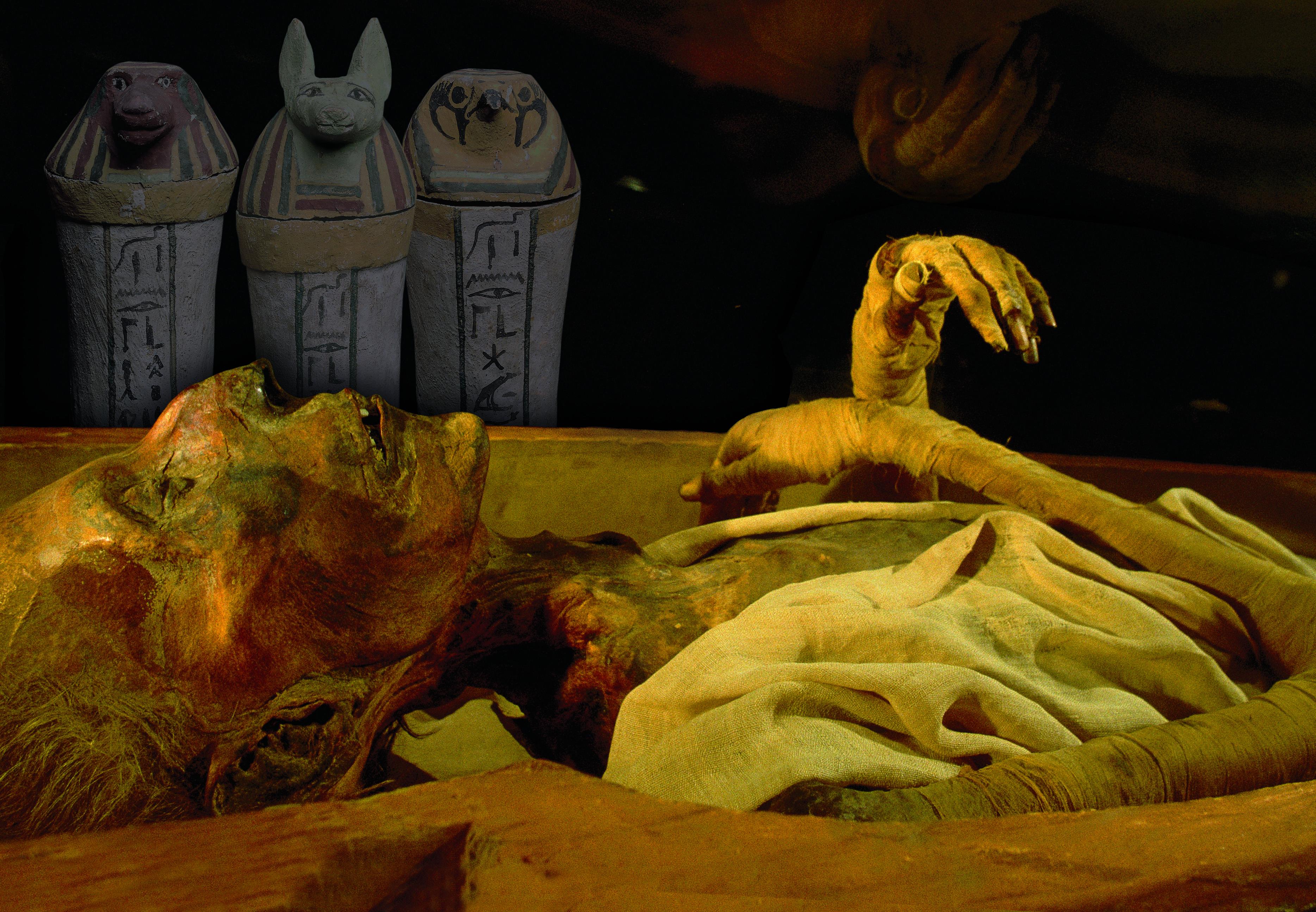 Varlden aldsta ost hittad pa mumie