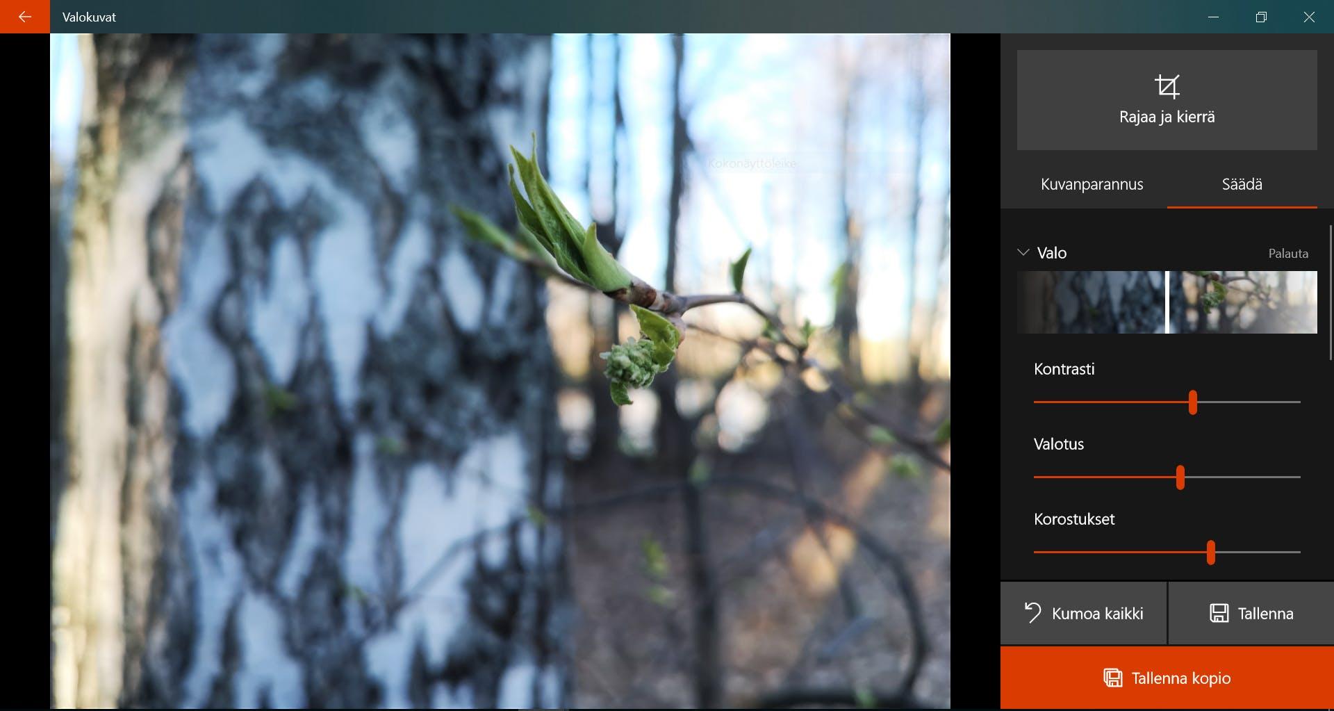 Kuvakollaasi Ohjelma Windows 10