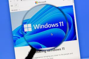 Windows 11 specs mngs1zbpopvhlf sqldz4a