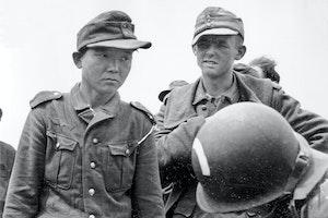 Yang kyoungjong utah beach normandie 1944 v6qh4l3h7y6q84xvpckuxq
