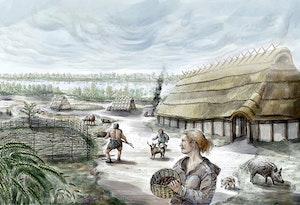 Yngre stenalder rekonstruktions bild utgravning ostra  odarslov lund a3z751m36f4kky7set0a7q
